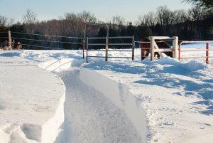 Snow path on horse farm