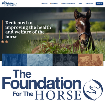 The Foundation for the Horse