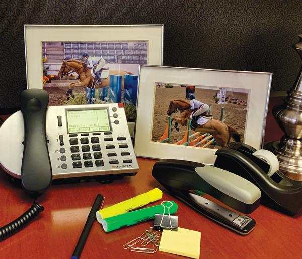 Work Life Horse Balance - Desk Photo